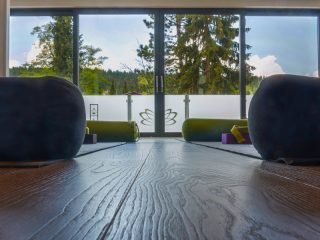 Myo Yin Yoga - 5. August 2020